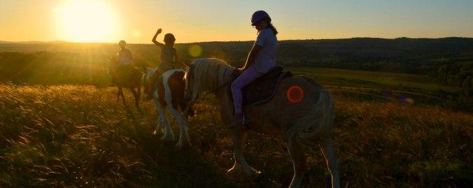 Sunset horse riding in Srem village Bulgaria