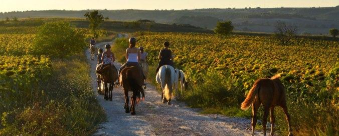 Bulgaria horse riding holidays