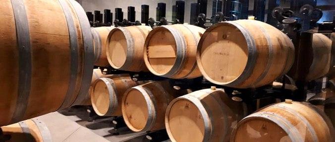 Castra Rubra vineyard Bulgaria