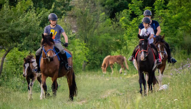 horse riding Bulgaria, horse riding holidays Bulgaria, Bulgarian horse riding holidays, affordable horse riding holidays, 3