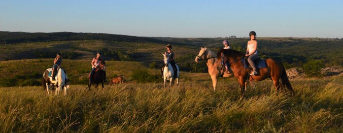horse riding Bulgaria, horse riding holidays Bulgaria, Bulgarian horse riding holidays, affordable horse riding holidays, 4